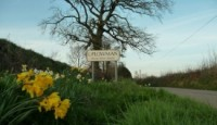 thumbs_village-sign-and-daffodils-uplowman